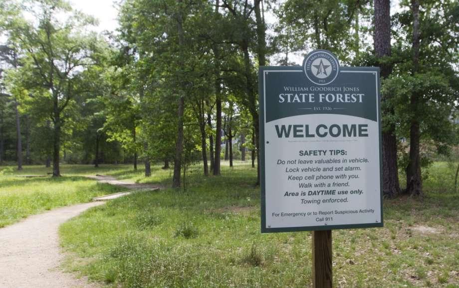 """Képtalálat a következ?re: """"W G JONES STATE FOREST"""""""