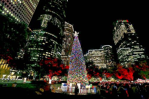 bus tour - Houston Christmas Events